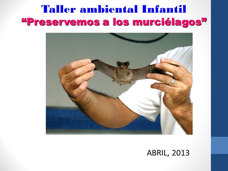 Taller ambiental Infantil Preservemos a los murciélagos