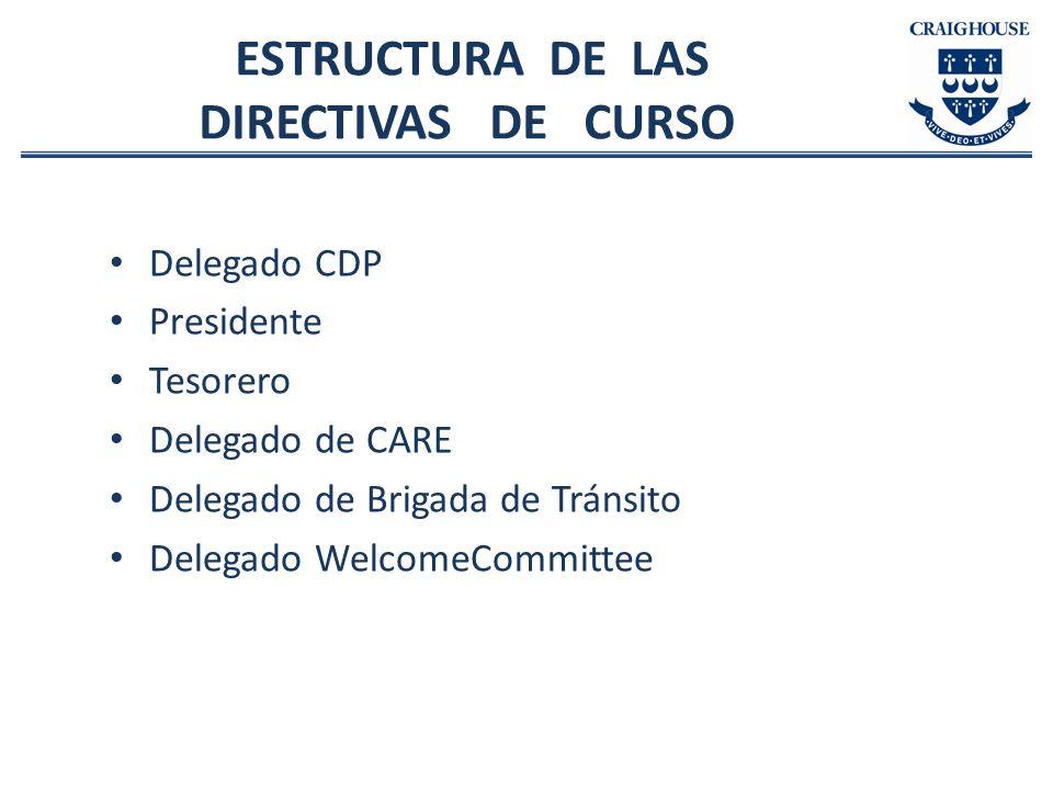 ESTRUCTURA DE LAS DIRECTIVAS DE CURSO