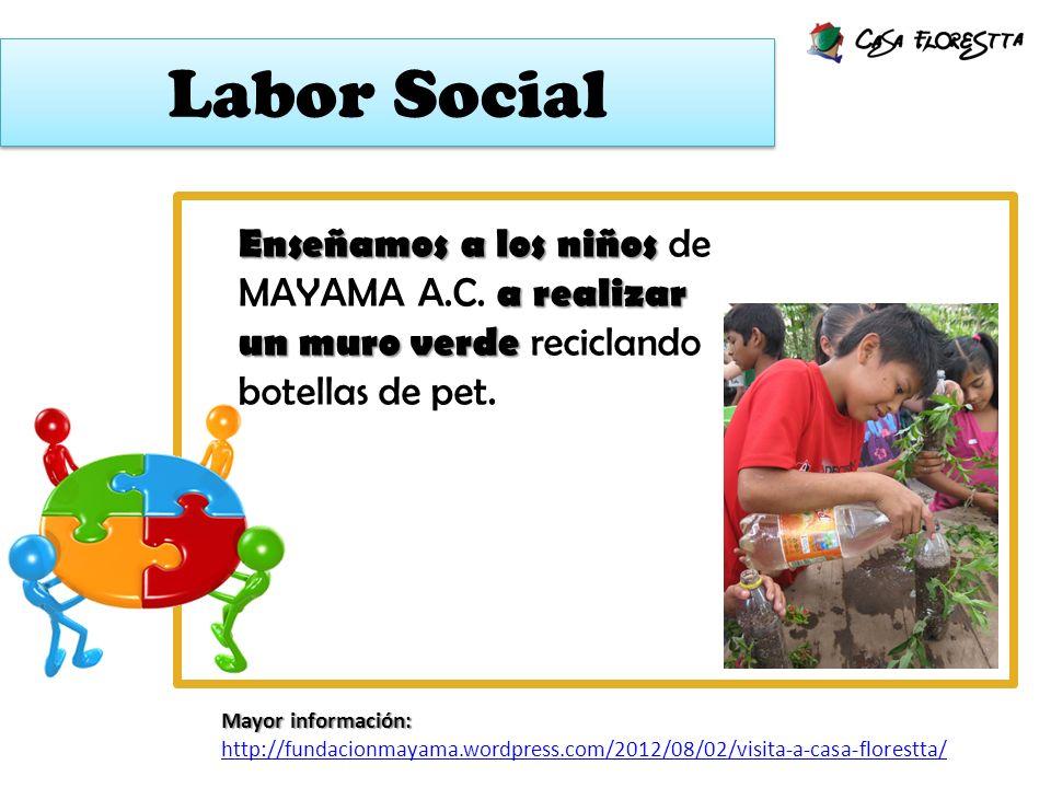 Labor Social Enseñamos a los niños de MAYAMA A.C. a realizar un muro verde reciclando botellas de pet.