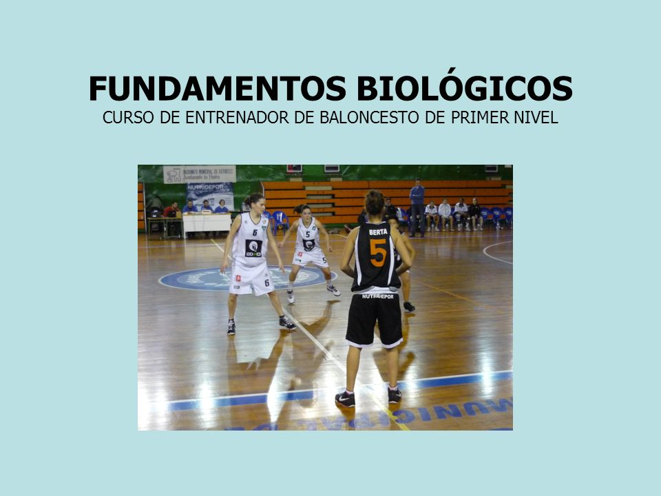 FUNDAMENTOS BIOLÓGICOS CURSO DE ENTRENADOR DE BALONCESTO DE PRIMER NIVEL