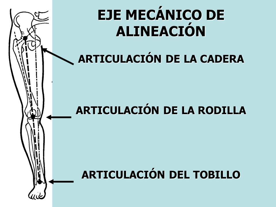 EJE MECÁNICO DE ALINEACIÓN