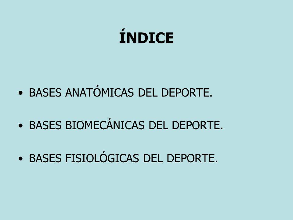 ÍNDICE BASES ANATÓMICAS DEL DEPORTE. BASES BIOMECÁNICAS DEL DEPORTE.