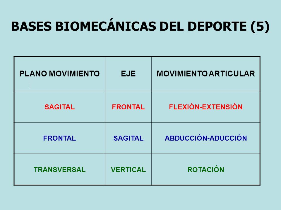 BASES BIOMECÁNICAS DEL DEPORTE (5)