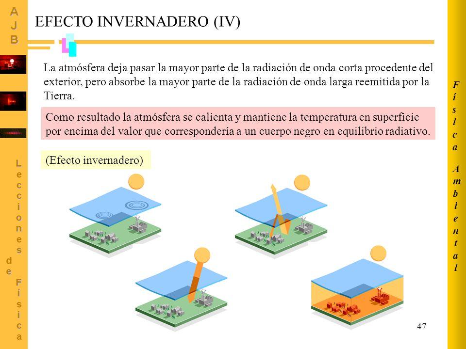 EFECTO INVERNADERO (IV)