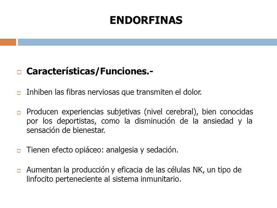 ENDORFINAS Características/Funciones.-