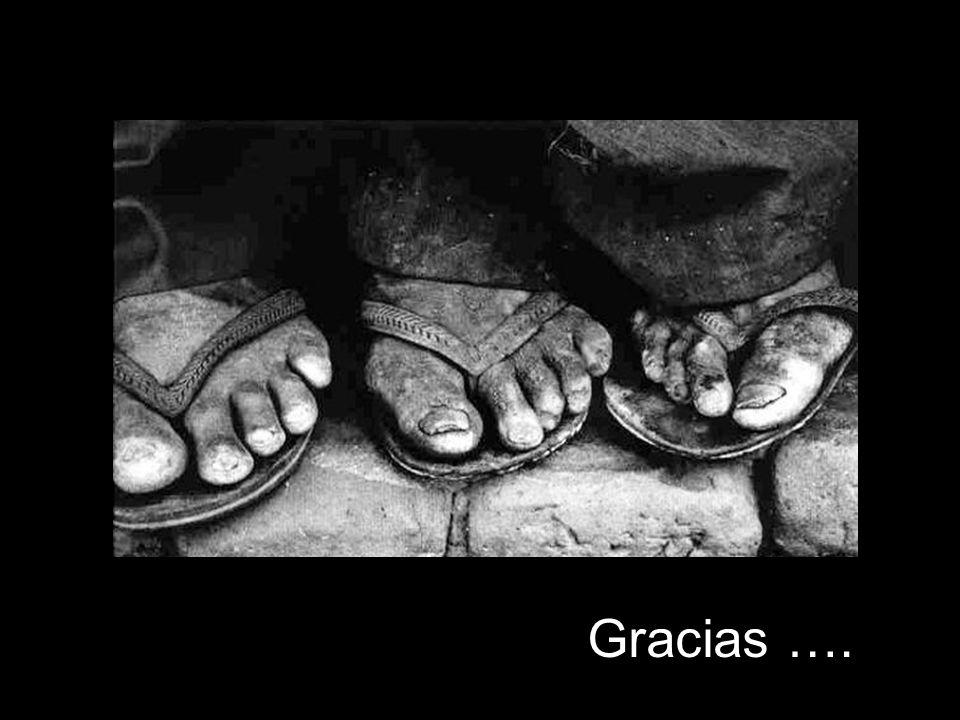 Gracias ….
