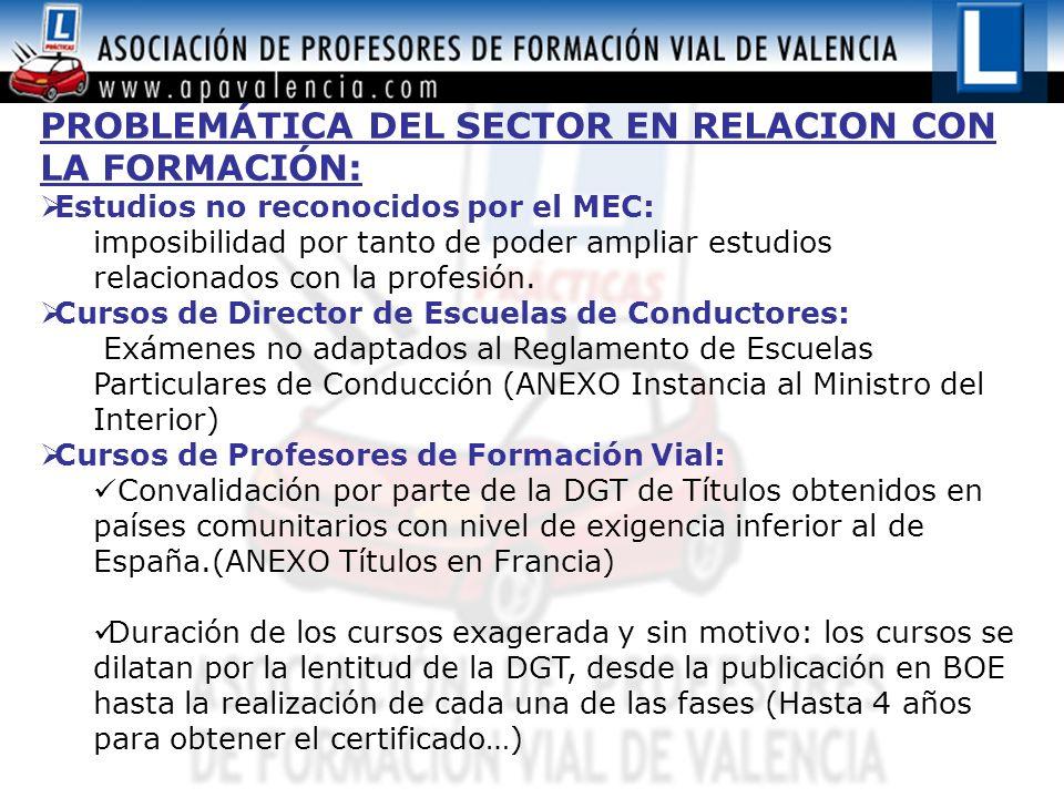 PROBLEMÁTICA DEL SECTOR EN RELACION CON LA FORMACIÓN: