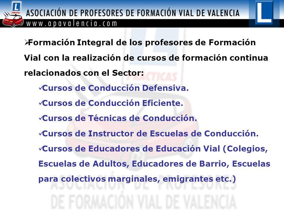 Formación Integral de los profesores de Formación Vial con la realización de cursos de formación continua relacionados con el Sector: