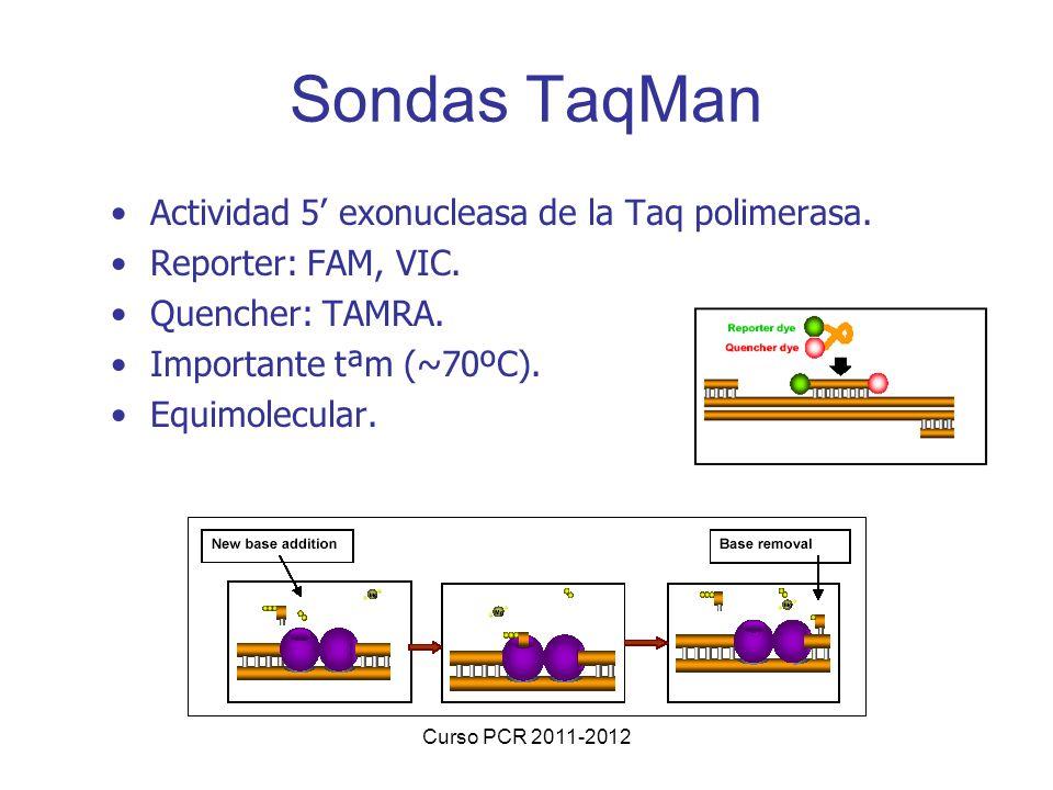 Sondas TaqMan Actividad 5' exonucleasa de la Taq polimerasa.