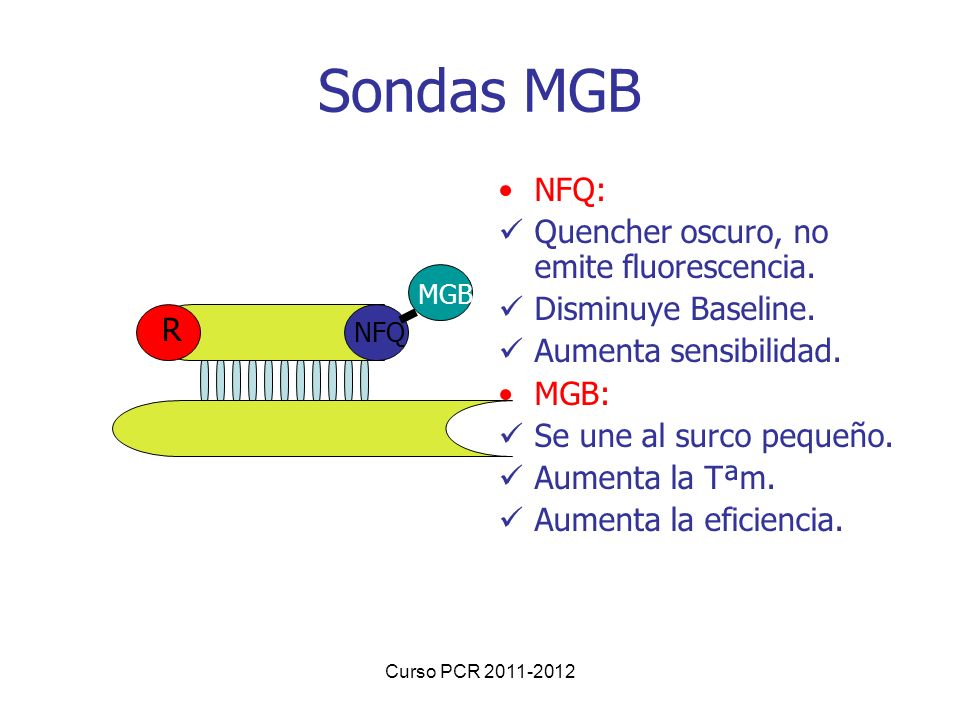 Sondas MGB NFQ: Quencher oscuro, no emite fluorescencia.