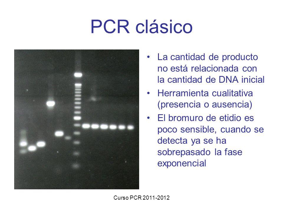PCR clásico La cantidad de producto no está relacionada con la cantidad de DNA inicial. Herramienta cualitativa (presencia o ausencia)