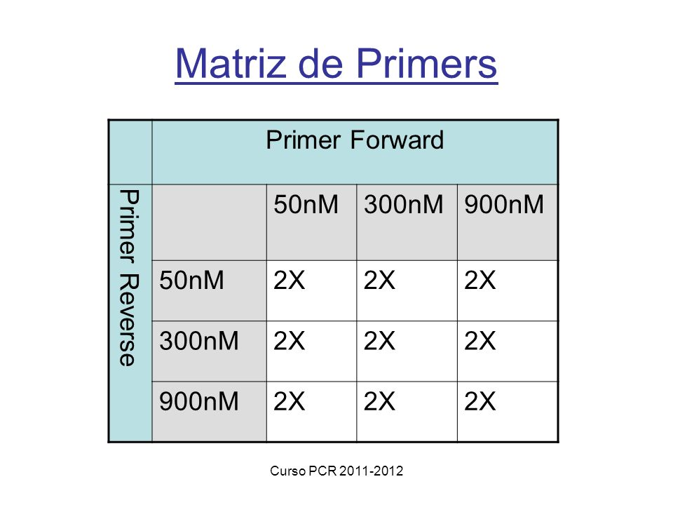 Matriz de Primers Primer Forward Primer Reverse 50nM 300nM 900nM 2X