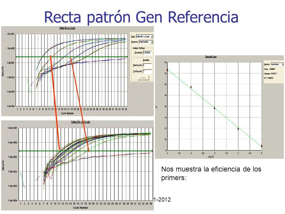 Recta patrón Gen Referencia