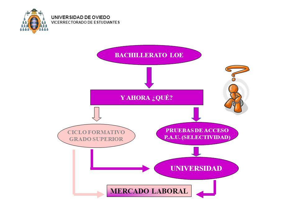 UNIVERSIDAD MERCADO LABORAL