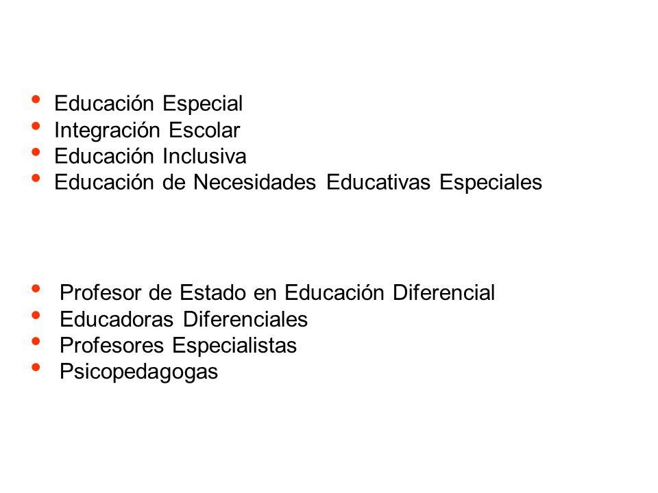 Educación Especial Integración Escolar. Educación Inclusiva. Educación de Necesidades Educativas Especiales.