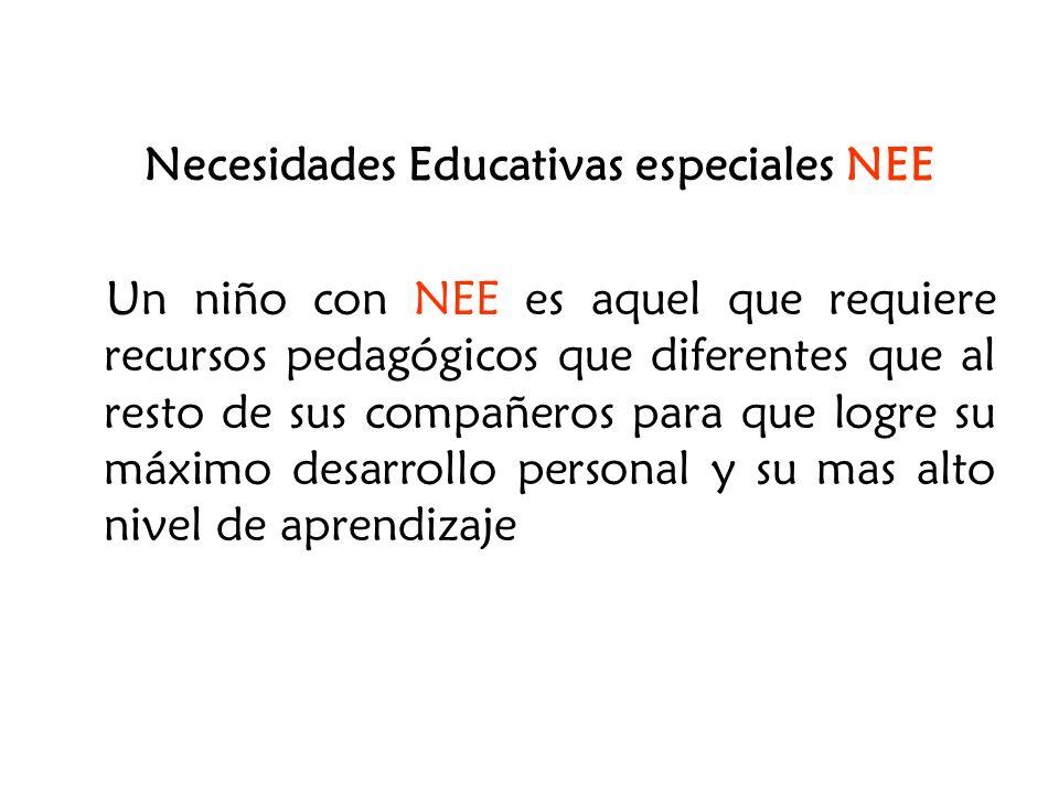 Necesidades Educativas especiales NEE