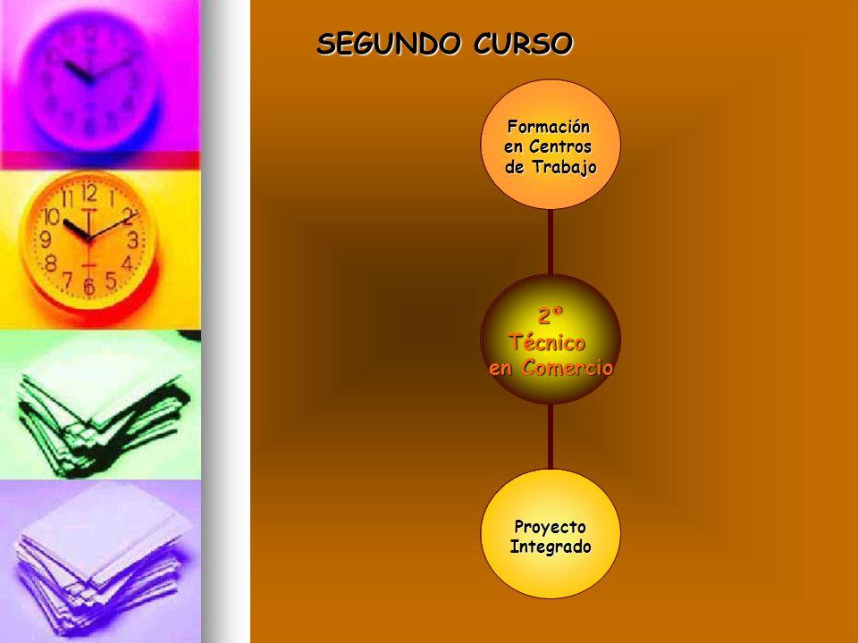 SEGUNDO CURSO