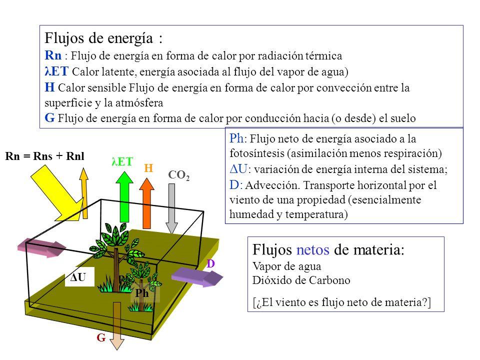 Flujos netos de materia: Vapor de agua Dióxido de Carbono