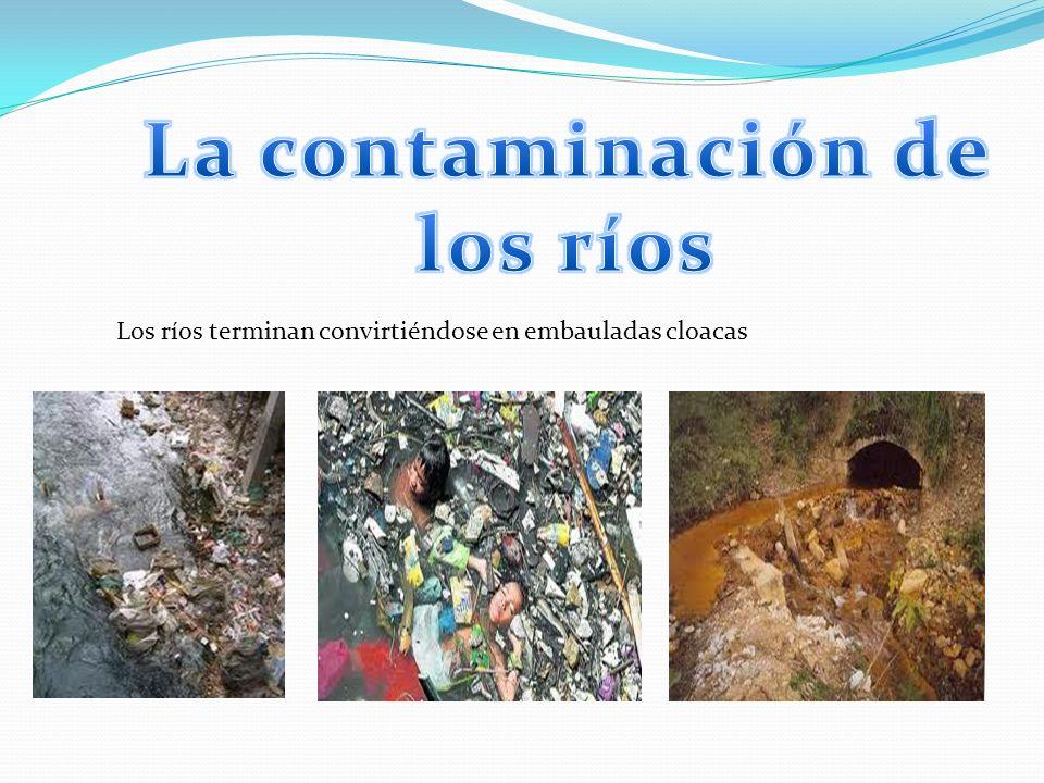 La contaminación de los ríos