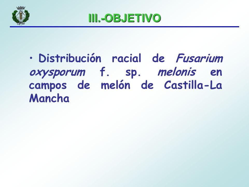 III.-OBJETIVO Distribución racial de Fusarium oxysporum f.