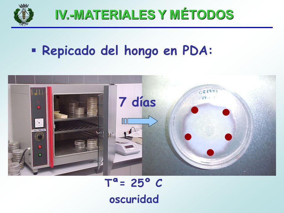IV.-MATERIALES Y MÉTODOS