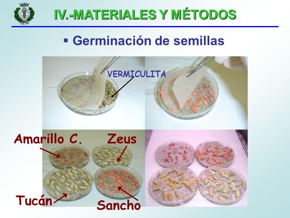 IV.-MATERIALES Y MÉTODOS Germinación de semillas