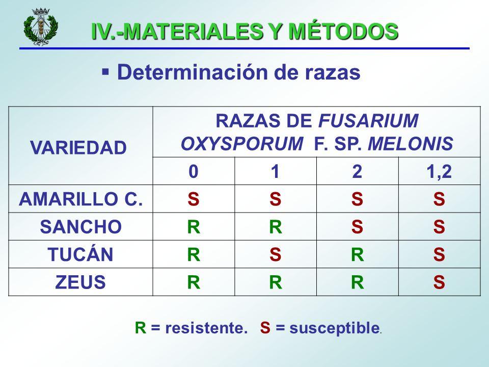 IV.-MATERIALES Y MÉTODOS Determinación de razas