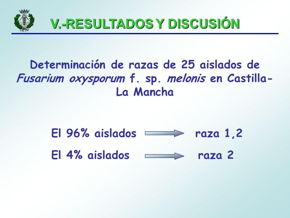 V.-RESULTADOS Y DISCUSIÓN