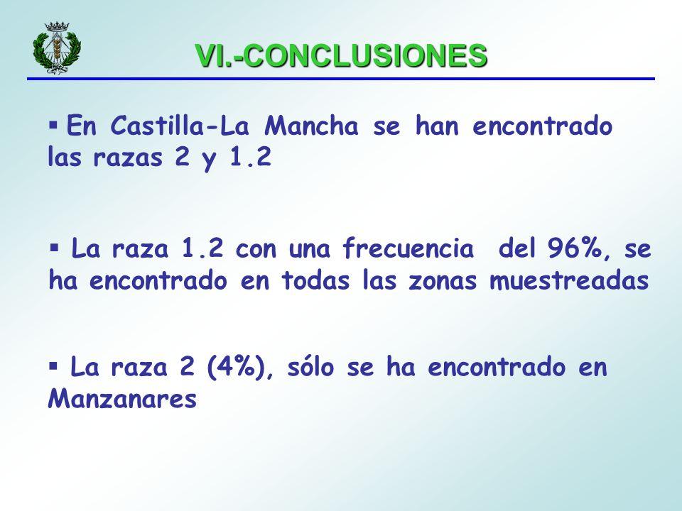 VI.-CONCLUSIONES En Castilla-La Mancha se han encontrado las razas 2 y 1.2.
