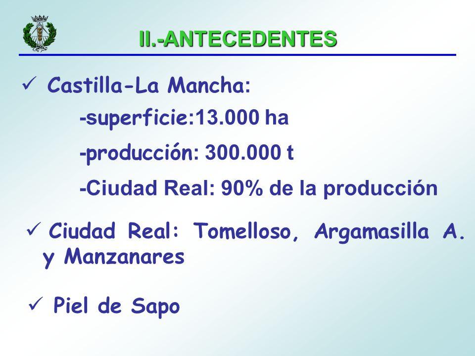 II.-ANTECEDENTES Castilla-La Mancha: -superficie:13.000 ha. -producción: 300.000 t. -Ciudad Real: 90% de la producción.