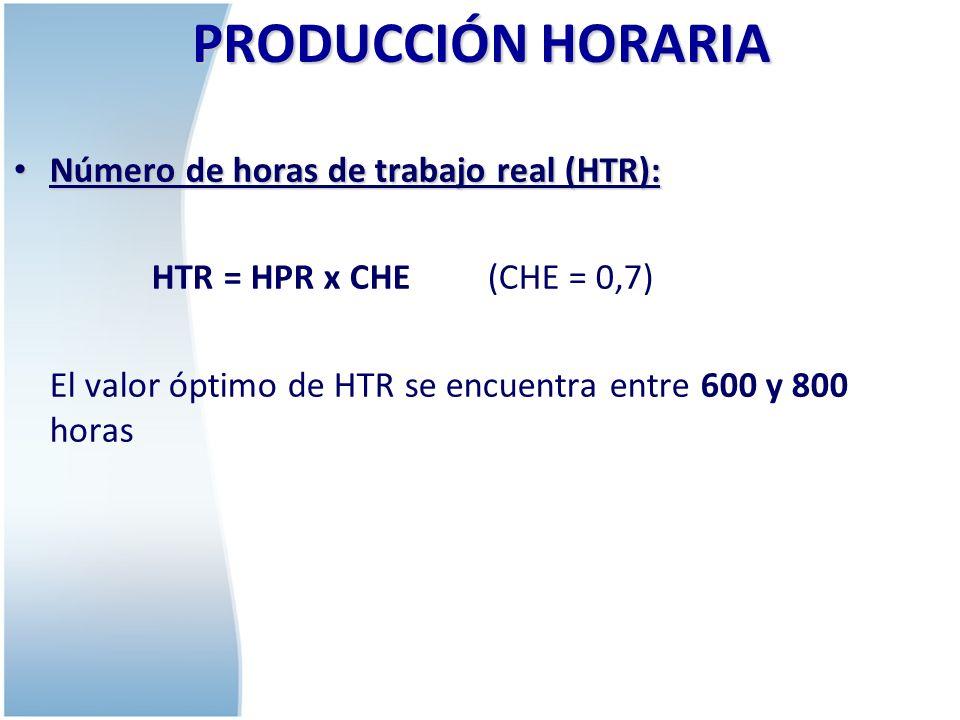 PRODUCCIÓN HORARIA Número de horas de trabajo real (HTR):