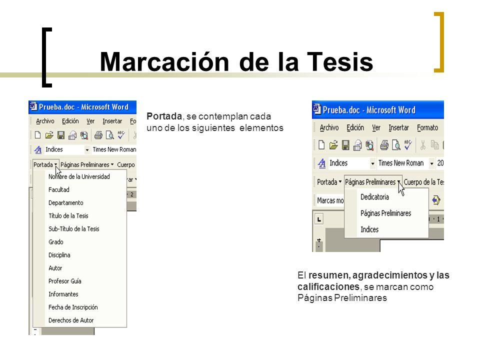 Marcación de la Tesis Portada, se contemplan cada uno de los siguientes elementos.