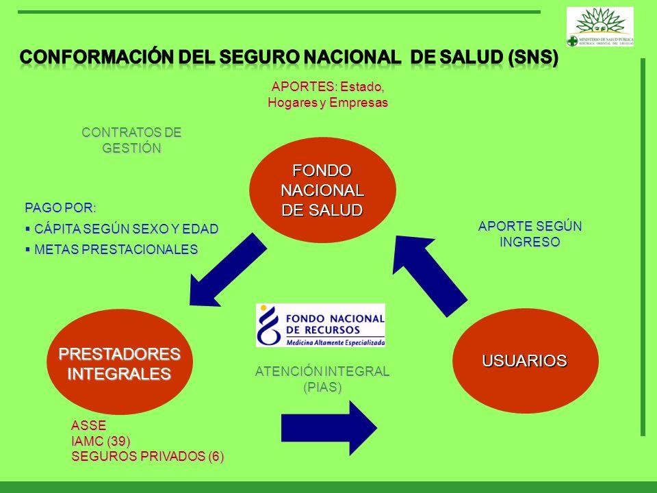 CONFORMACIÓN DEL SEGURO NACIONAL DE SALUD (SNS)