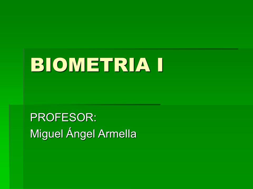 PROFESOR: Miguel Ángel Armella