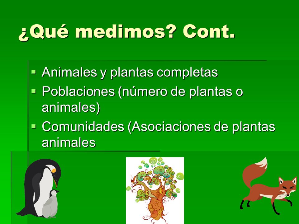¿Qué medimos Cont. Animales y plantas completas