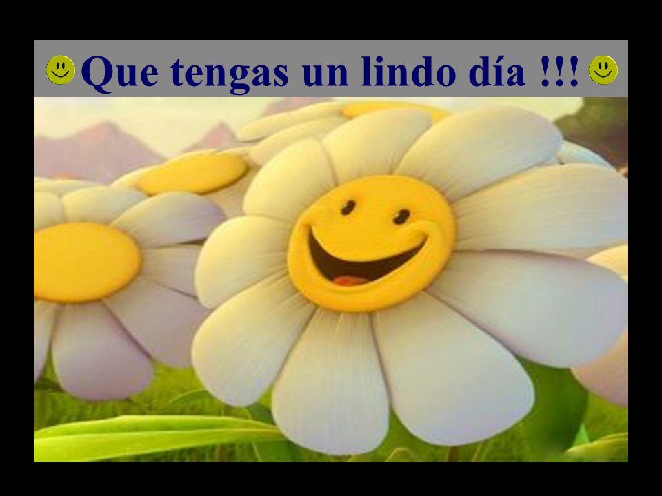 Que tengas un lindo día !!!