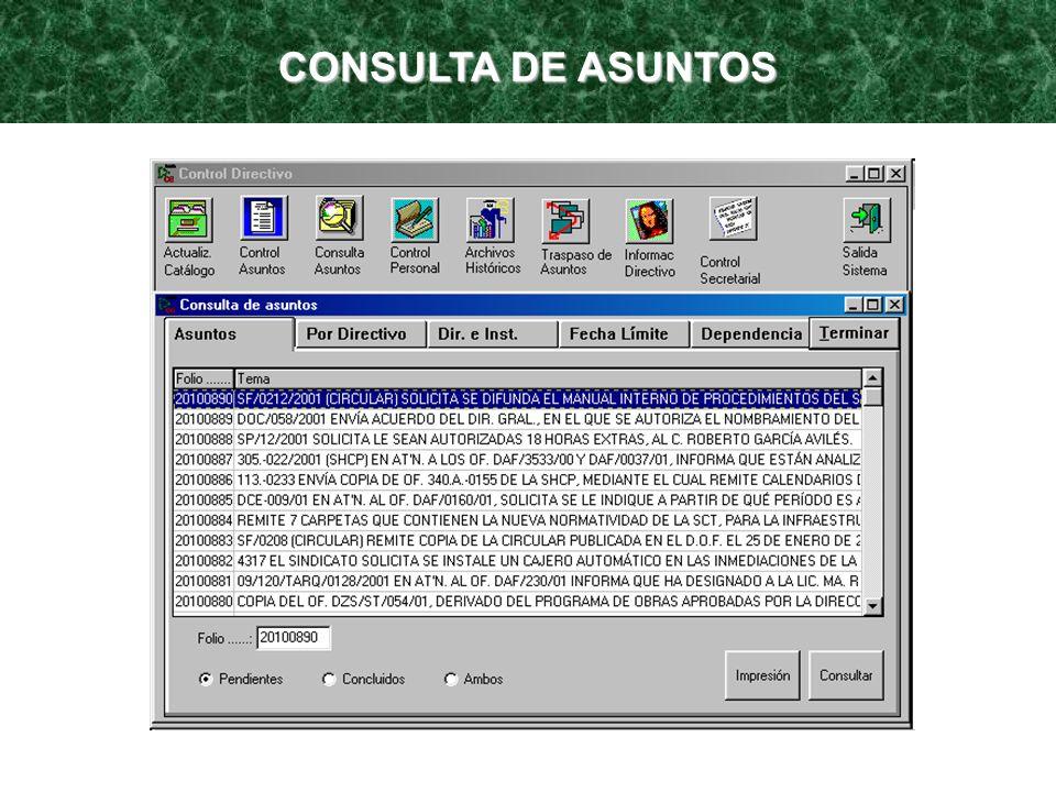 CONSULTA DE ASUNTOS