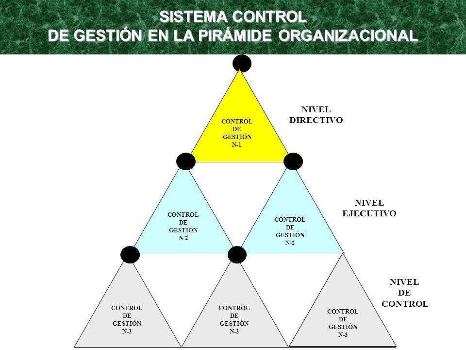 SISTEMA CONTROL DE GESTIÓN EN LA PIRÁMIDE ORGANIZACIONAL