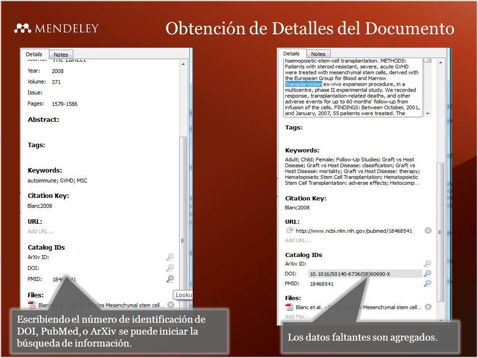 Obtención de Detalles del Documento