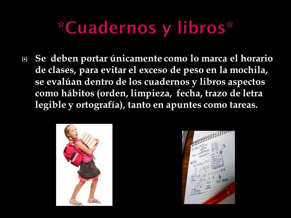 *Cuadernos y libros*