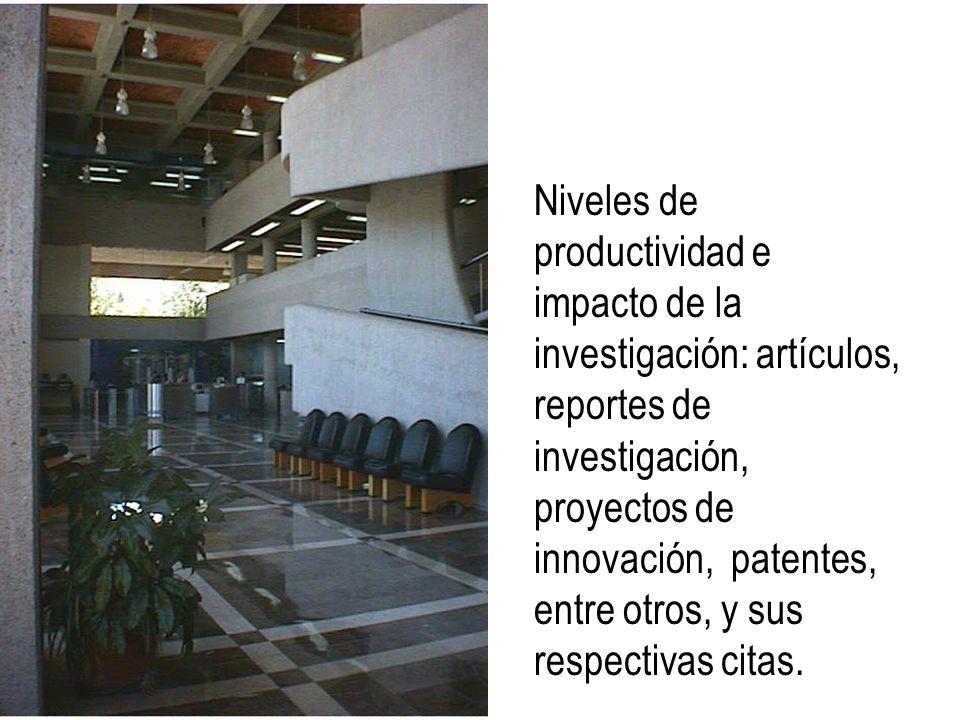 Niveles de productividad e impacto de la investigación: artículos, reportes de investigación, proyectos de innovación, patentes, entre otros, y sus respectivas citas.