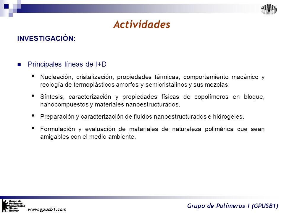 Actividades INVESTIGACIÓN: Principales líneas de I+D