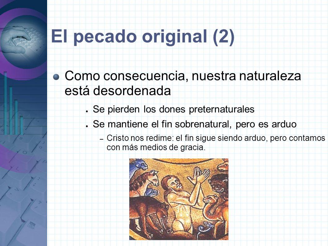 El pecado original (2) Como consecuencia, nuestra naturaleza está desordenada. Se pierden los dones preternaturales.