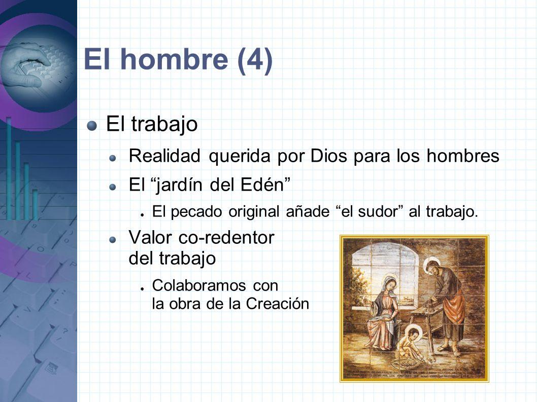 El hombre (4) El trabajo Realidad querida por Dios para los hombres
