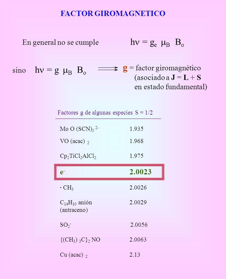 g = factor giromagnético