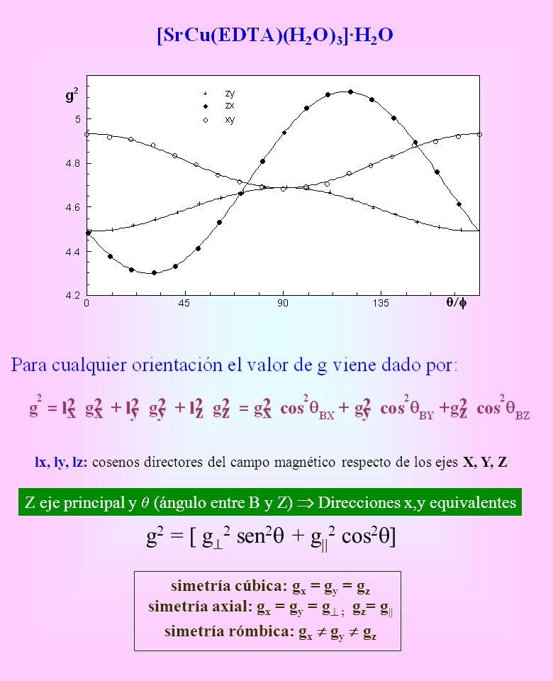 lx, ly, lz: cosenos directores del campo magnético respecto de los ejes X, Y, Z