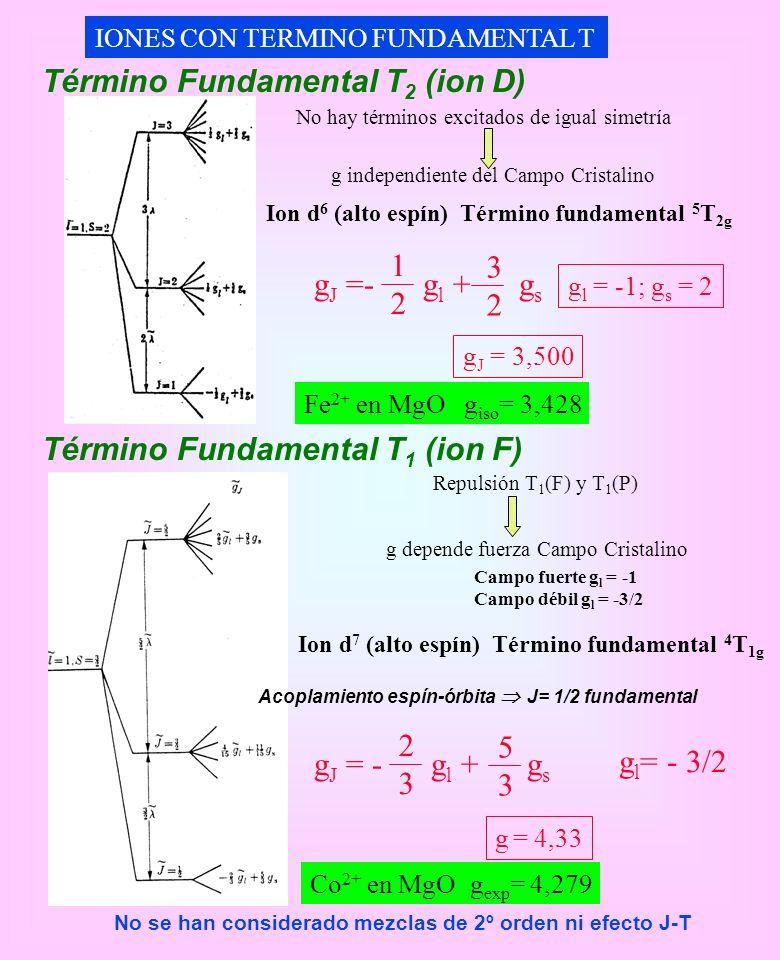 Término Fundamental T2 (ion D)