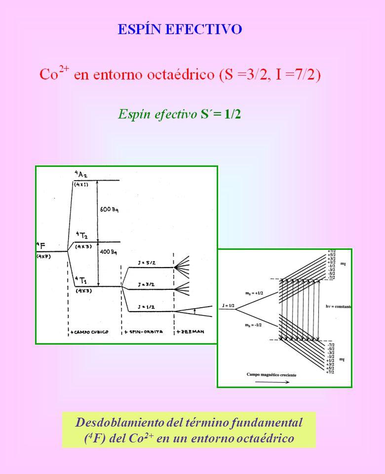 Desdoblamiento del término fundamental (4F) del Co2+ en un entorno octaédrico