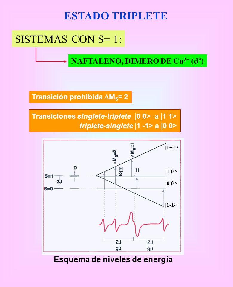 ESTADO TRIPLETE SISTEMAS CON S= 1: NAFTALENO, DIMERO DE Cu2+ (d9)