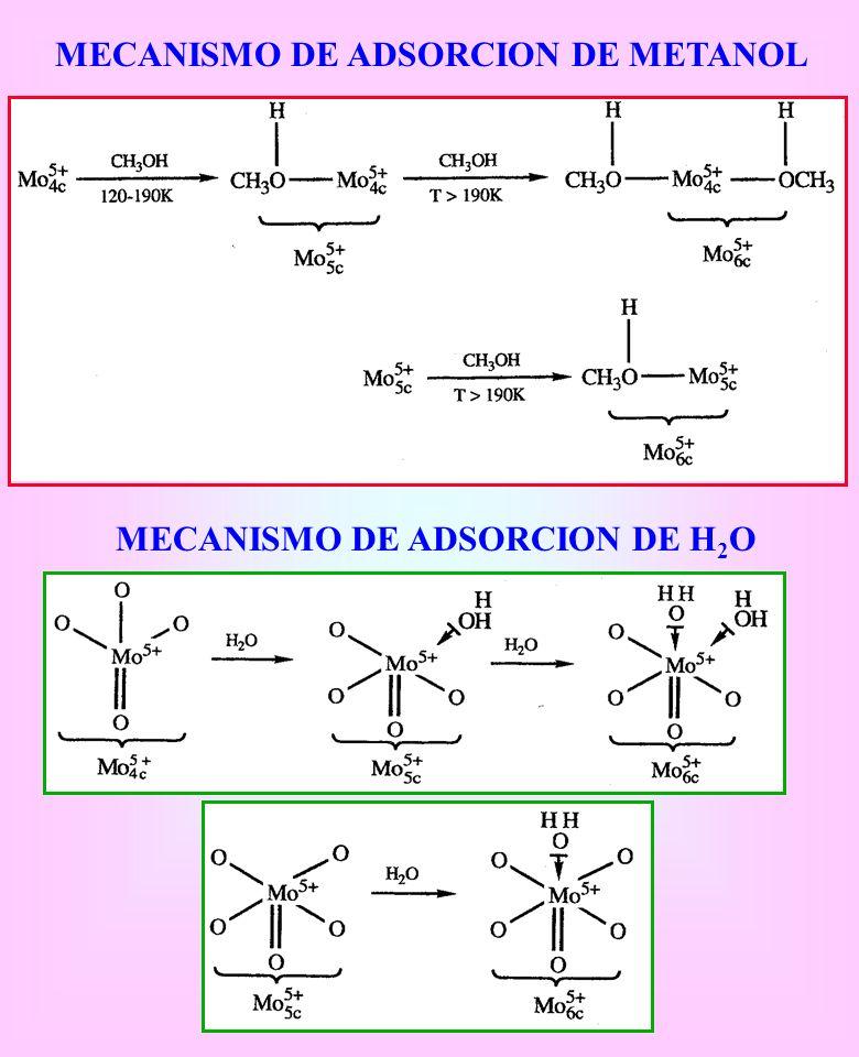 MECANISMO DE ADSORCION DE H2O